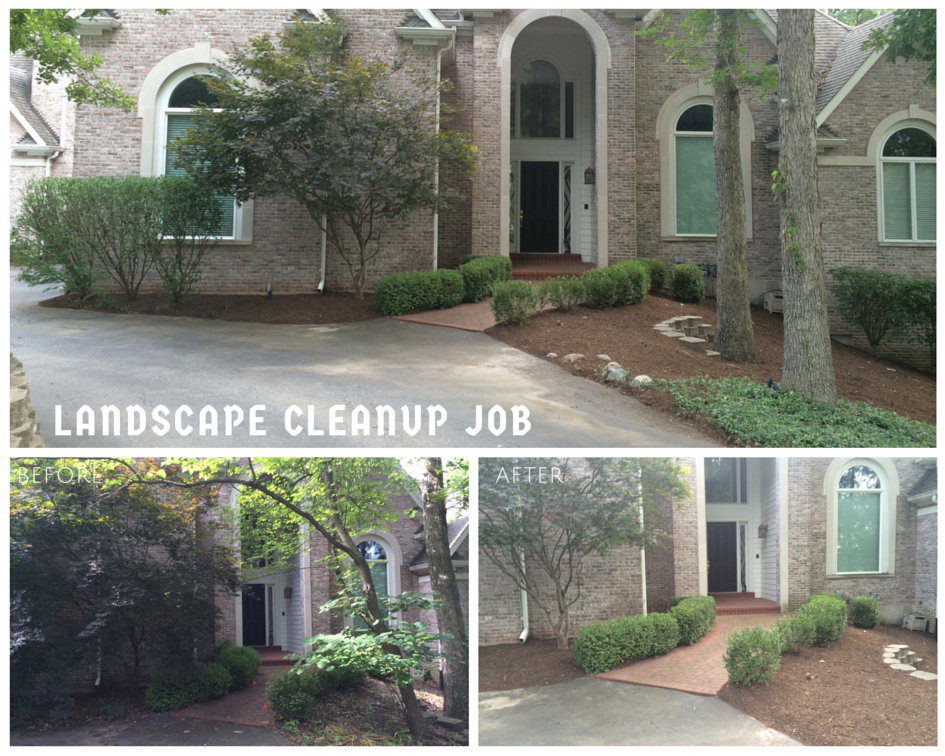 Chesterfield, MO Landscape Cleanup Job
