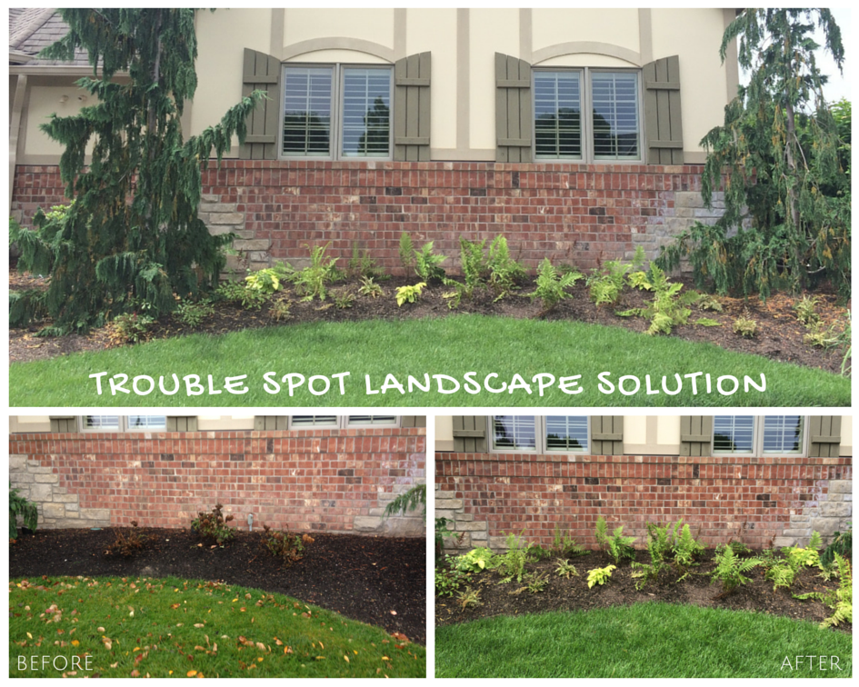 Chesterfield, MO Landscape Bed Redesign Project