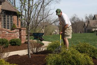 Dowco Spring Bed Cleanup