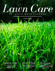 Lawn Care for St. Louis Weed Control