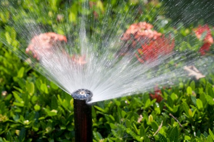 Irrigation System Startup