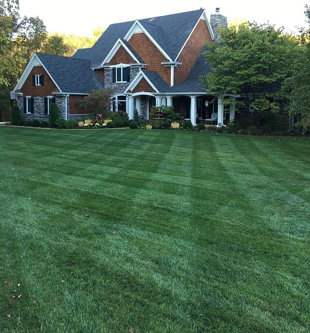 Dowco Lawn Renovation