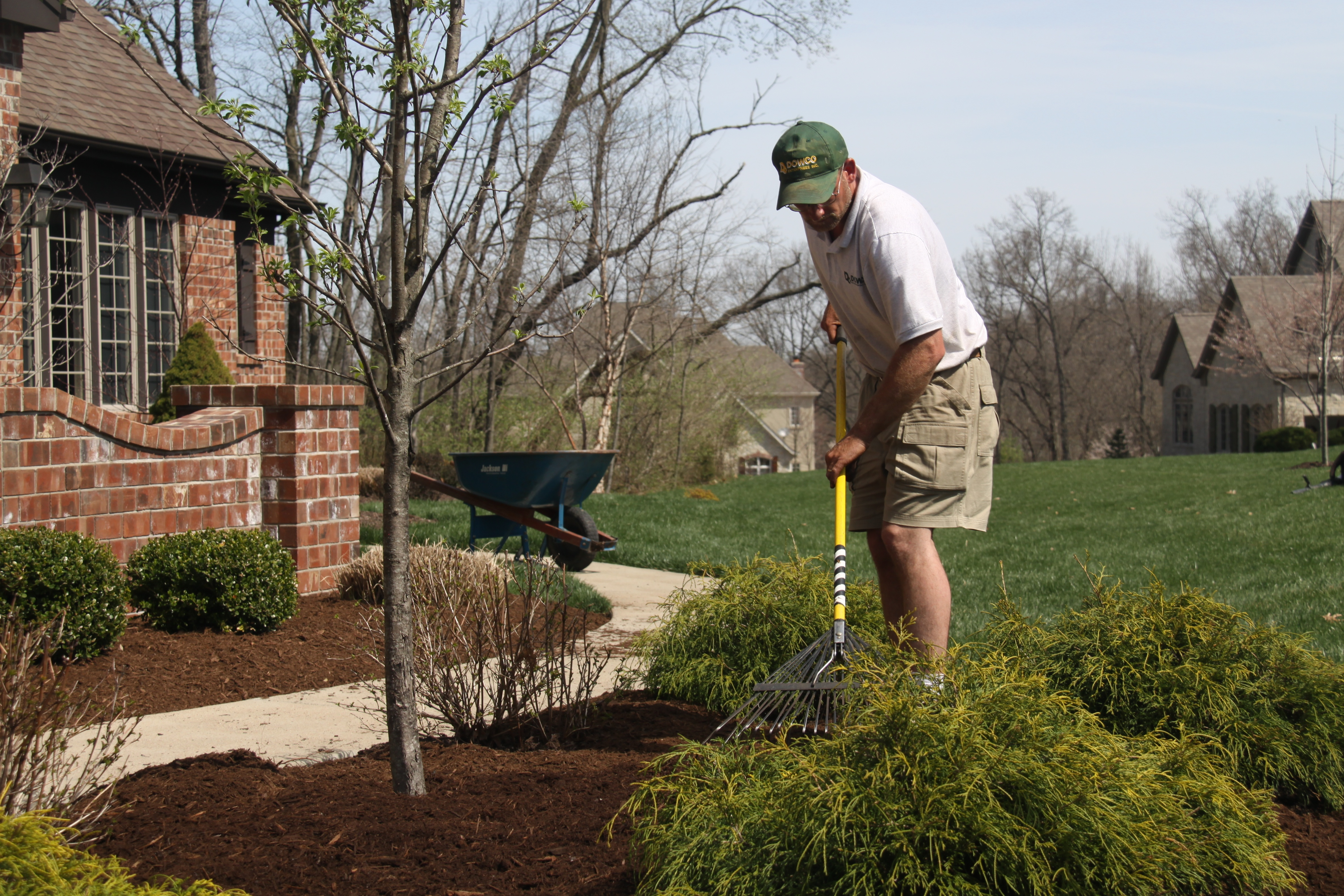 Bed Cleanup and Mulching Service St. Louis MO