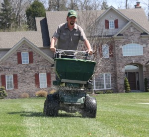 Lawn Fertilization and Weed Control Service St. Louis MO